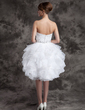 A-Line/Princess Sweetheart Knee-Length Satin Organza Wedding Dress With Beading Sequins Cascading Ruffles (002024083)