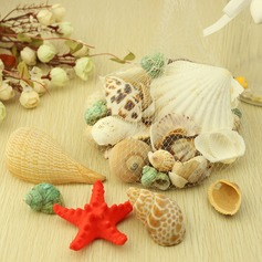 Beach Theme Starfish and Seashell Decorative Accessories