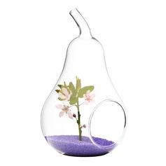 Peer vormig Glas Vaas